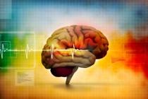 Mozog - 2.časť
