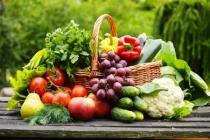 Jedlo ako závislosť alebo ako nástroj života?